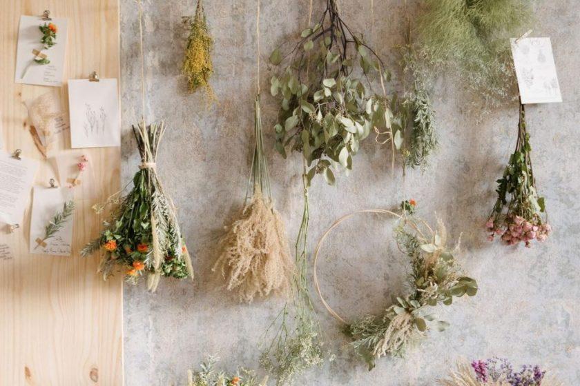 Bergamotte, un nouveau regard sur l'art floral